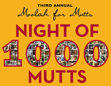 Moolah For Mutts: Night of 1000 Mutts