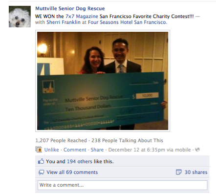 7x7 Magazine Favorite Charity Contest winner Muttville Senior Dog Rescue